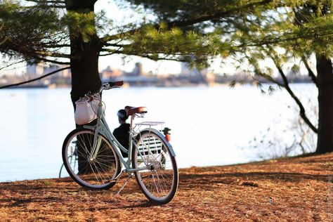 Morning bicycle rides - how incorporating rides into your daily routine can help bring you zen, and how to combine exercise and mindfulness in one activity.