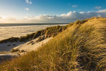 Landschaft Mit Dunen Auf Der Insel Amrum Insel Amrum Amrum