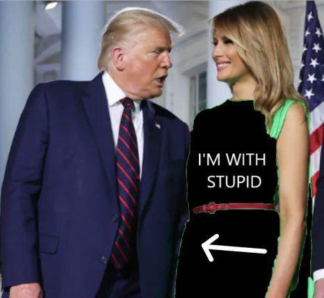 18 Melania Green Screen Dress Memes Because She Dresses To Kill Funny Trump Pictures Memes Dress Meme