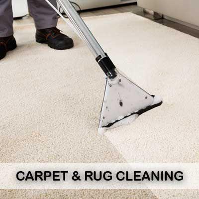 Carpet Rug Cleaning Professional Carpet Cleaning How To Clean Carpet Carpet Cleaning Company