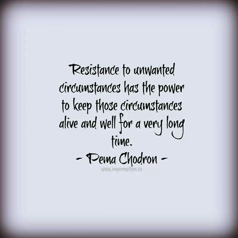 Pema Chodron Quote Mind Like Water Pinterest Pema Chodron Amazing Pema Chodron Quotes
