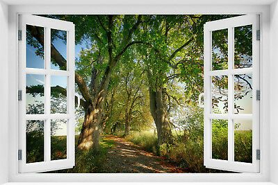 3d Wandillusion Fototapete Fensterblick Wald Natur Landschaft Vlies Krl 26 Fototapete Tapeten Bilder