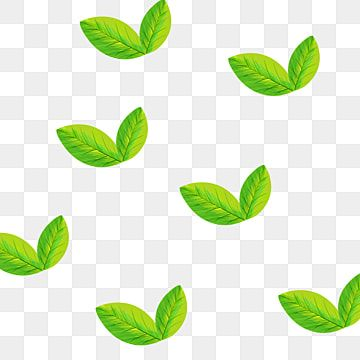 Green Plant Leaves Hand Painted Tea Leaves Transparent Bottom Free Green Leaves Plants Png Transparent Clipart Image And Psd File For Free Download Plant Leaves Green Leaf Tea Watercolor Plants