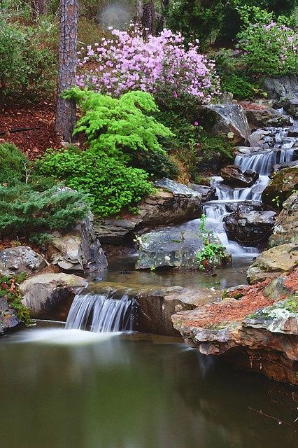 Garvan Woodland Gardens Garden Waterfall Water Features In The Garden Waterfalls Backyard