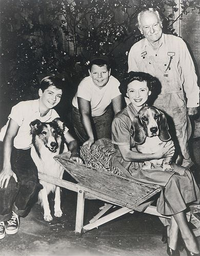 Tommy Rettig, Donald Keeler, Jan Clayton, George Cleveland, Lassie, and Pokey
