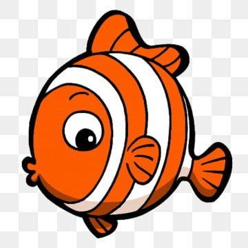 ปลาการ ต นส ตว ทะเลซ ร ส Q ช ว ตทางทะเล ส ตว ร น Qภาพ Png สำหร บการดาวน โหลดฟร ในป 2021 ส ตว การ ต น น าร ก