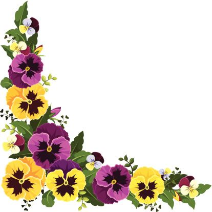 Vector Corner Background With Yellow And Purple Pansy Flowers And In 2020 Flower Drawing Tutorials Pansies Flowers