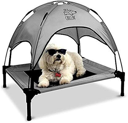 Floppy Dawg Just Chillin Elevated Dog Bed Medium And Large Size