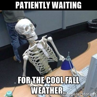 2a5253ab340d63e2569c298f8058b97f image result for fall weather meme weather pinterest fall