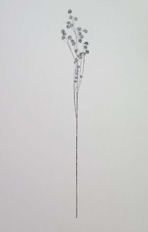 Kleine handgemachte original botanische Monoprint von Stef Mitchell Wildpflanzen Zittergras Druck Minimal und zarten Blumenkunst schwarze Tinte