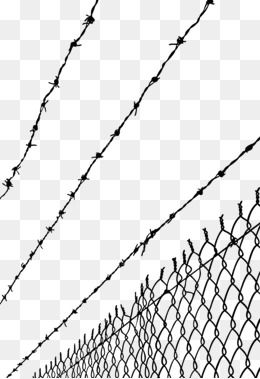 High Voltage Barbed Wire Fence Barbed Wire Vector High Voltage Vector Barbed Vector Wire Vector Protect Photoshop Backgrounds Texture Graphic Design Background