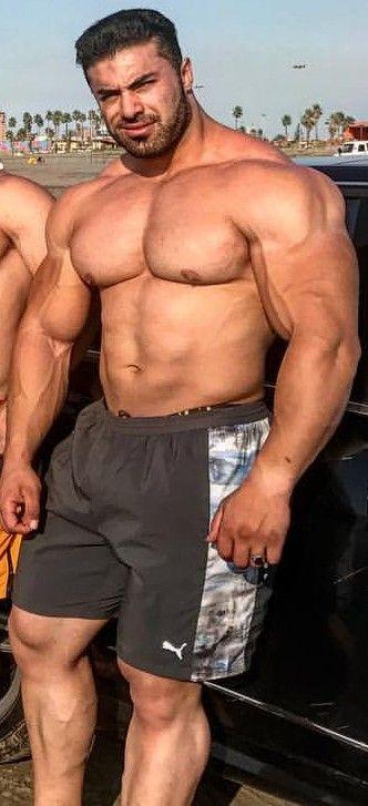 チャップマン 筋肉
