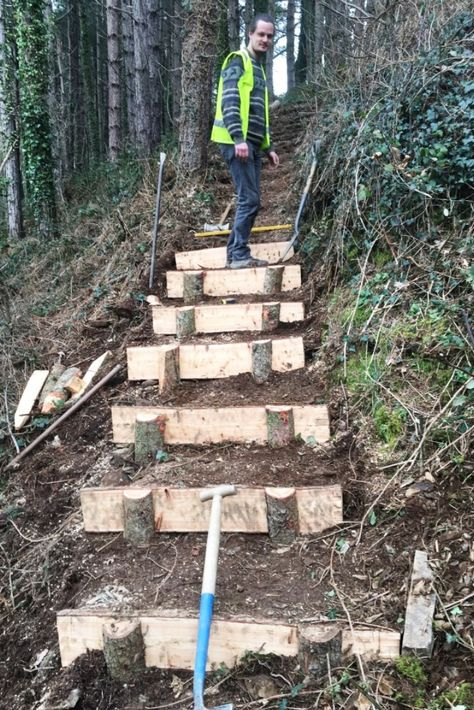 Trainee's have created steps for safer and better access in Coed Tyllwyd, Ceredigion on their accredited 12 week Sustainable Woodland Management course! Sloped Yard, Sloped Backyard, Backyard Landscaping, Steep Hillside Landscaping, Forest Garden, Woodland Garden, Garden Paths, Outdoor Projects, Garden Projects