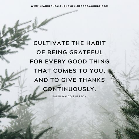 #Cultivate #Habits #Grateful #EveryGoodThing #GiveThanks #LeannesHealthandWellnessCoaching #HealthCoach #HealthyLiving #HealthyLifestyle