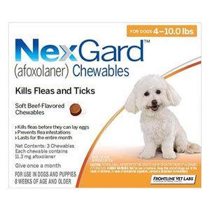 Pin On Best Deals Online Pet Supplies