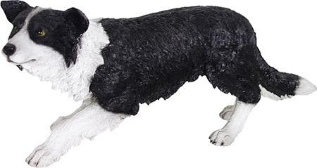 Poly Resin Border Collie 62 X 20 X 26cm Collie Border Collie