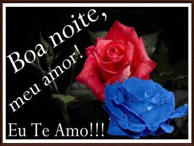 Mensagem De Boa Noite Com Flores De Amor Mensagem De Boa Noite