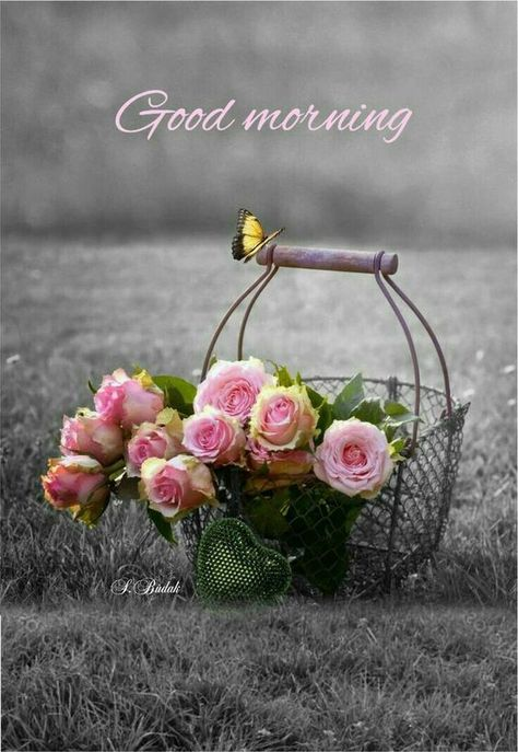 Good Morning all! #GoodMorningQuotes #GoodMorning #GoodMorningWishes #GoodMorningCards #PositiveGoodMorning