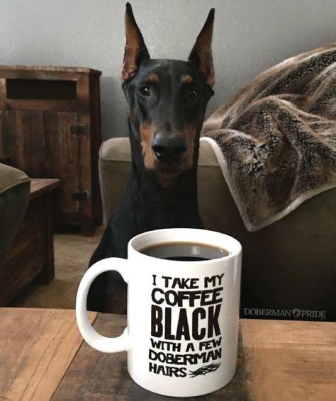 Dobe Hairs Coffee Mug! I like my coffee and my Dobies tall, dark, (and handsome?