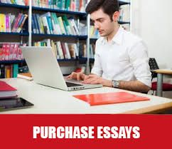 Professional Essay Writer Deliver Cheap Essaywriting Service In Uk For The Student To Improve Their Grade 100 Writing Academic Writers
