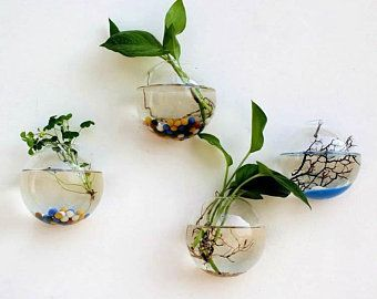 Sale Glass Wall Planters Indoor Plants Holder Wall Vase Art Etsy In 2020 Hanging Flower Pots Wall Terrarium Glass Wall Vase