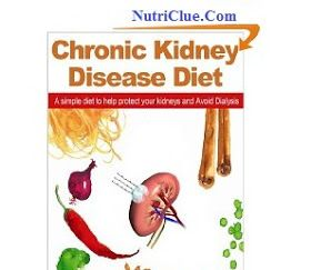Nutriclue: The Best Kidney Diet Foods For Chronic Kidney Disease Patients