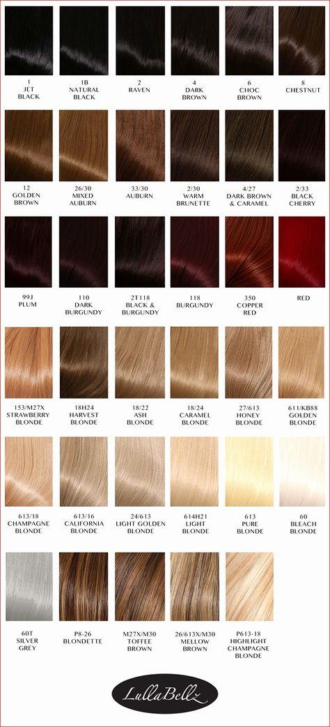 Sebastian Cellophanes Colors Chart 123924 Sebastian
