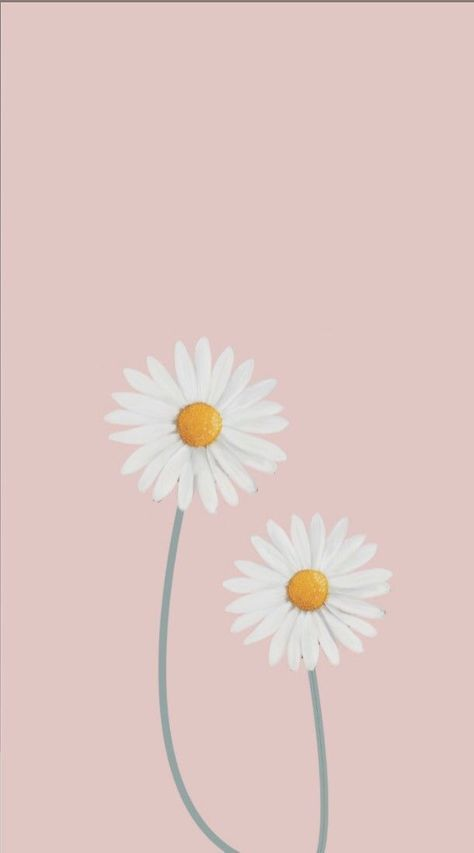 Get Best Simple Anime Wallpaper Iphone Wall Paper Fofos Floral 40 Best Ideas In 2020 Anime Wallpaper Iphone Daisy Wallpaper Tumblr Wallpaper