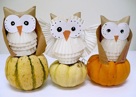 Tooo cute!  Toilet paper tubes make the body.  http://www.myowlbarn.com/2010/11/hooty-owls.html