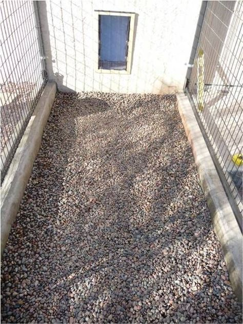 Dog Kennel Flooring 6 To 8 Inches