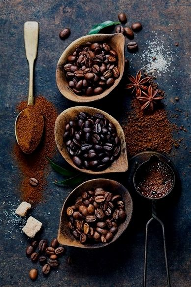 Need Your Morning Cup Of Coffee? Read Below! | Coffee tasting ...