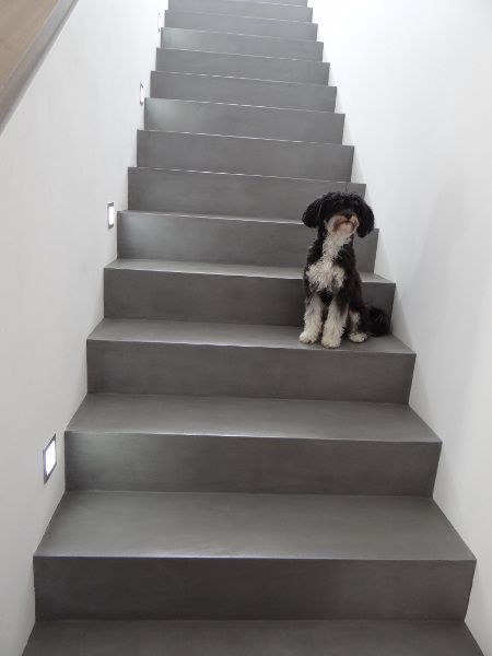 Betontreppe Gespachtelt Treppenbeschichtung Beton In 2020 Betontreppe Sichtbeton Treppe