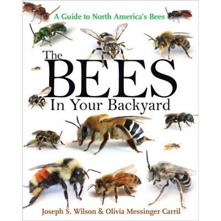 The Bees In Your Backyard A Guide To North America S Bees Bee Book Bee Bee Keeping