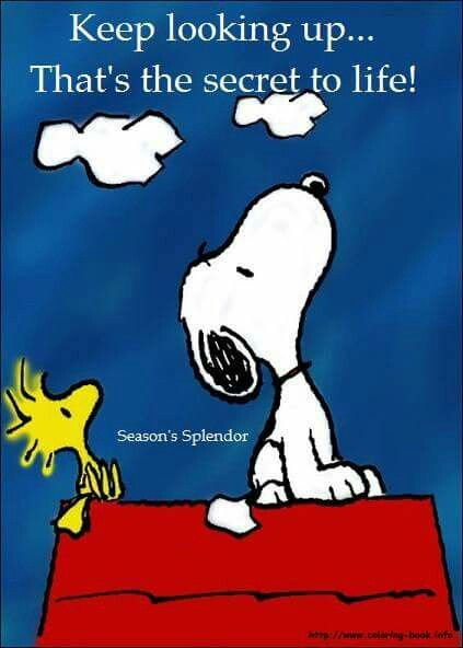 Keep Looking Up Snoopy Funny Snoopy Love Snoopy Quotes