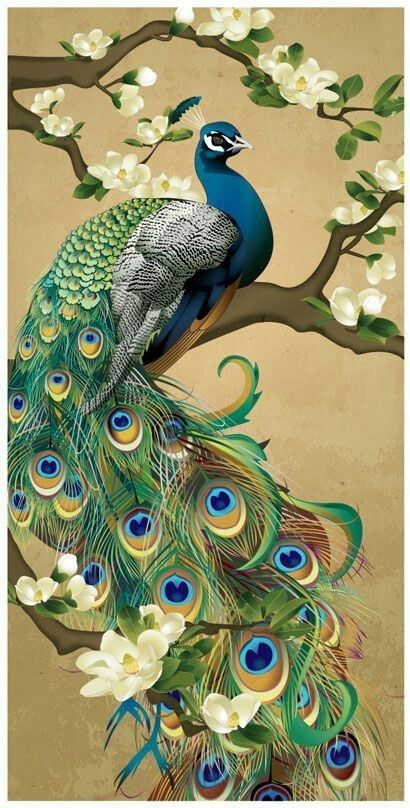 Beautiful peacock painting used as a needlepoint design but can be adapted to embroidery thread painting, found at link below