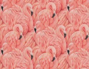 Large Flamingo Wallpaper Flamingo Wallpaper Pink Flamingo Wallpaper Pink Wallpaper