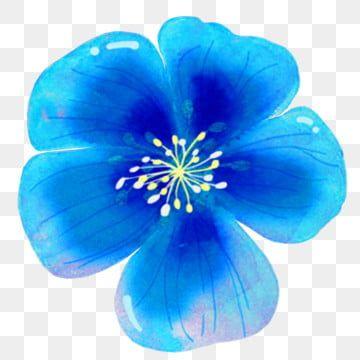 Blue Flower Flower Decoration Png Transparent Clipart Image And Psd File For Free Download Blue Flower Png Watercolor Flower Illustration Flower Illustration