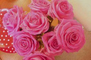 صور خلفيات ورود رومانسيه صور ازهار للتصميم رائعة Flower Images Flower Images Free Beautiful Flowers Images