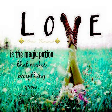 Love is the magic potion that makes everything grow. ☙