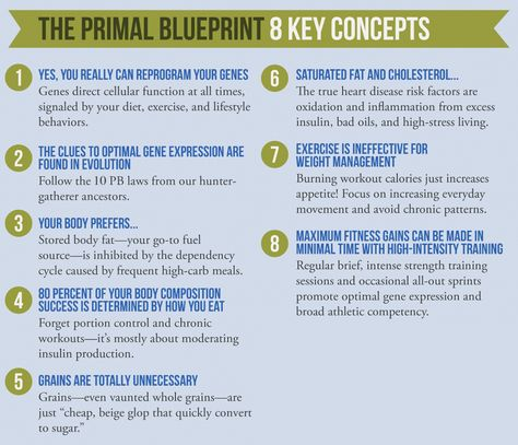 Primal Blueprint 30-Day Challenge Just what the trainers at my gym - copy blueprint meaning in kannada
