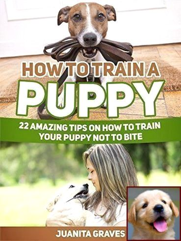 Dog Behavior Lowered Head And Clicker Training Dogs Not To Bark