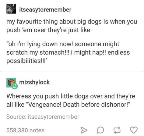 Shout out to the little dogs: tumblr
