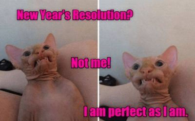 50 Funniest New Year S Resolution Memes For 2020 New Year Resolution Meme Funny New Year New Years Resolution Funny