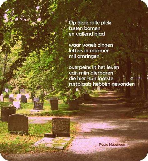 Gedichten Paula Hagenaars Begrafenis Gedichten Gedichten