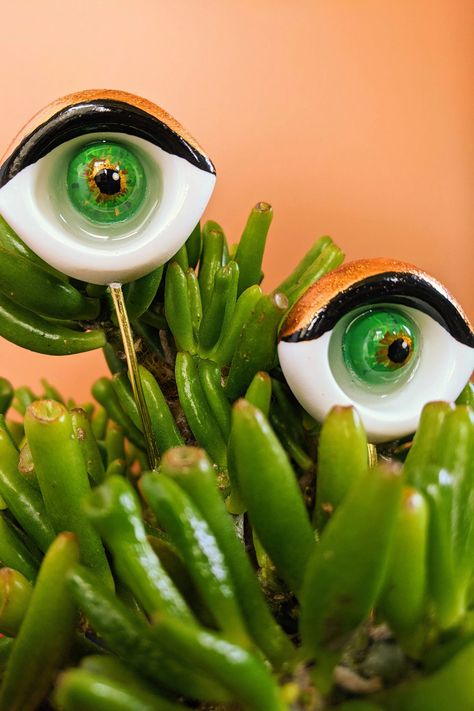 You know your plant has a personality! These eye plant support stakes are the perfect way to add some humor to any plant lovers pot. Made from resin and brass wire.