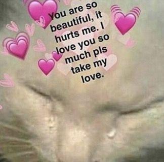 Pin By Kiara On Reaction Love Memes Cute Love Memes Wholesome Memes