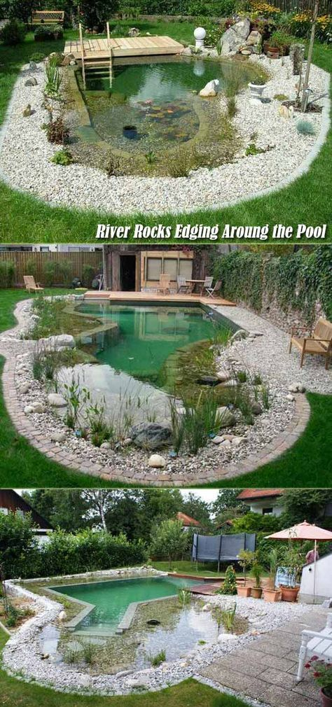 Similar To Rivers And Lakes Natural Or Organic Swimming Pools Are Completely Chemical Free And Have A Self Cleanin In 2020 Naturschwimmbad Natur Pool Naturschwimmbader