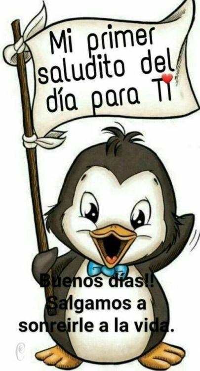 Best Memes Chistosos Buenos Dias Ideas