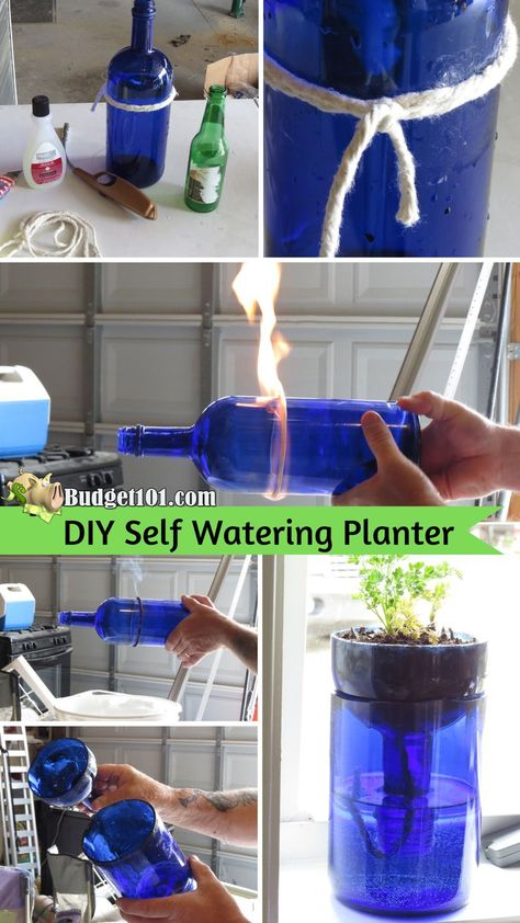 Glass Self Watering Planter Repurpose Liquor or Wine bottles into Self-Watering Windowsill Planters that take care of themselves! Repurpose Liquor or Wine bottles into Self-Watering Windowsill Planters that take care of themselves! Cutting Glass Bottles, Glass Bottle Crafts, Diy Bottle, Wine Bottle Cutting, Alcohol Bottle Crafts, Diy Self Watering Planter, Self Watering Bottle, Garrafa Diy, Wine Bottle Planter