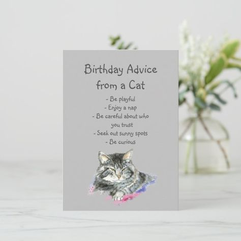 Birthday Advice from a Cat Fun Animal Humor